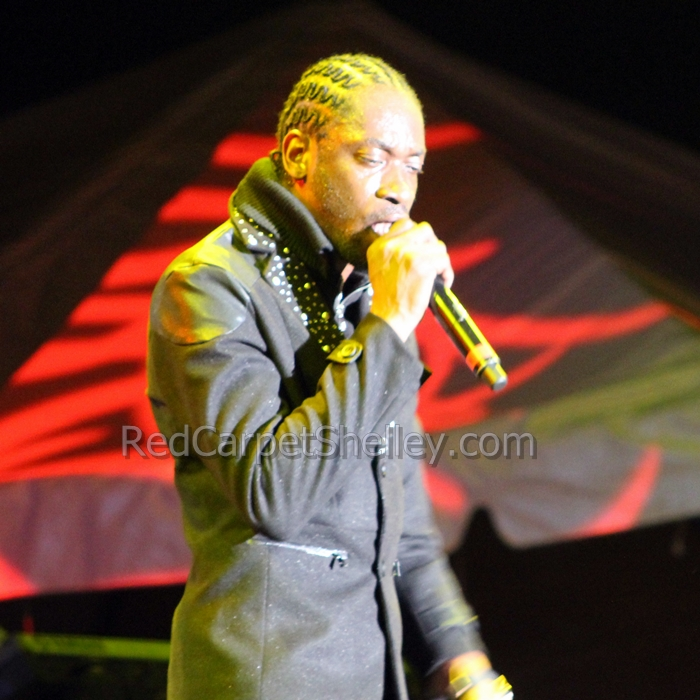 Bounty Killer  ©RedCarpetShelley.com
