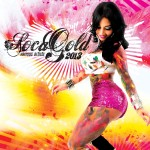 Soca Gold 2013 Turns Up The Heat This Season – Out Next Week (May 21)