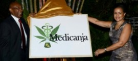 MediCanja unveiling on Weds. Dec. 4, 2013.
