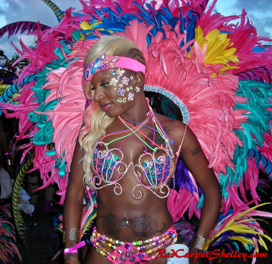 Masquerader at Miami Carnival 2014.  Photo:  RedCarpetShelley.com