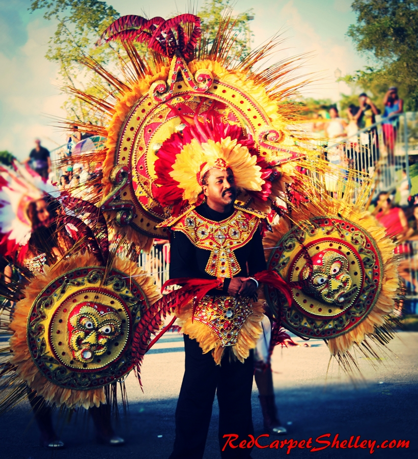 30th Anniversary of Miami Carnival took place on October 12, 2014.  Photo:  RedCarpetShelley.com