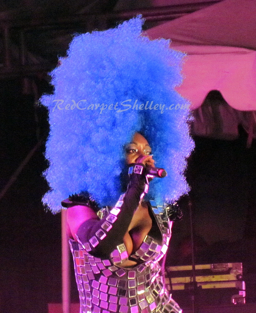 Jamaican dancehall artist Spice performs at Reggae Sumfest. Photo: Redcarpetshelley.com