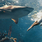 VIDEO:  Bad Gal Riri Swims with REAL Sharks for Harper's Bazaar Photo Shoot – WATCH NOW!