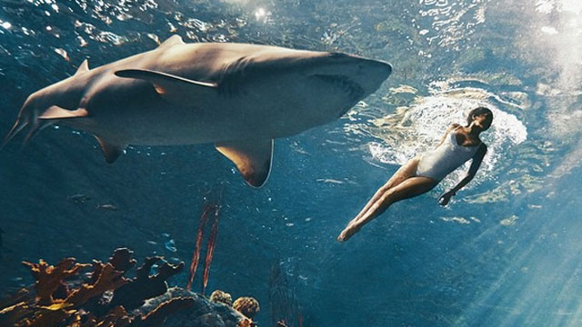 rihanna Swims with Sharks