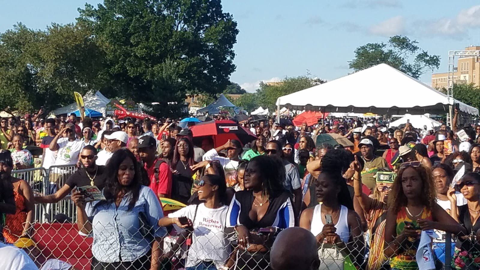 Crowd enjoying the NY Jerk Festival.  PHOTO:  Sandra Edwards, redcarpetshelley.com