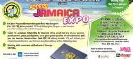 PICA - Access JA Expo Ad